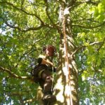 SRUC student Jennifer Wright up a tree in PPE