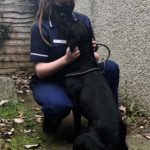 Vet Care Assistant Student Ceara crouching in dark blue Vet Scrubs and petting a black dog